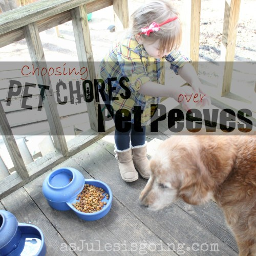 choosing pet chores over pet peeves