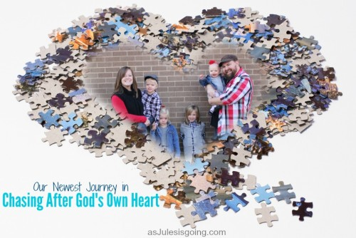 Our Newest Journey in Chasing After God's Own Heart on fostercare and adoption in Arkansas